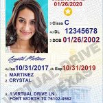 Texas learners permit